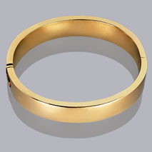 14K Yellow Gold 12mm Plain Bangle